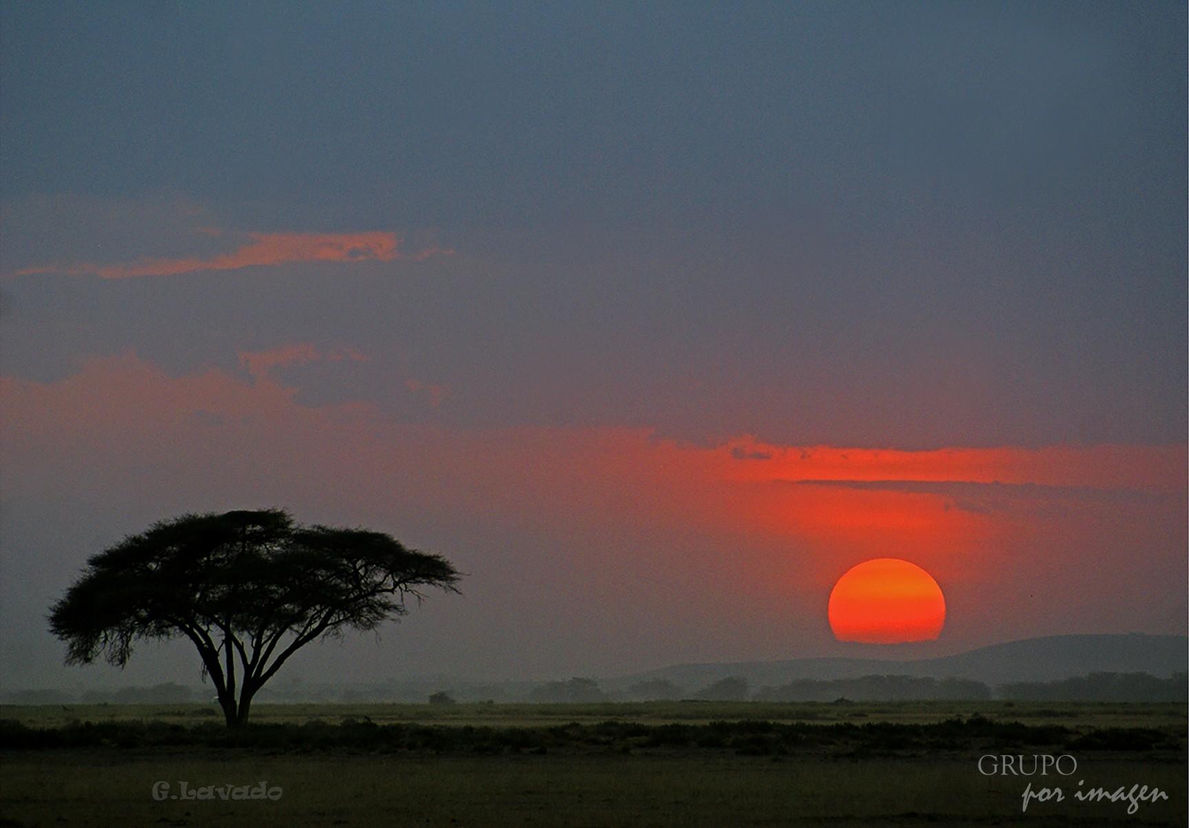 Parque Nacional Amboselli – Kenya / Graciela Lavado