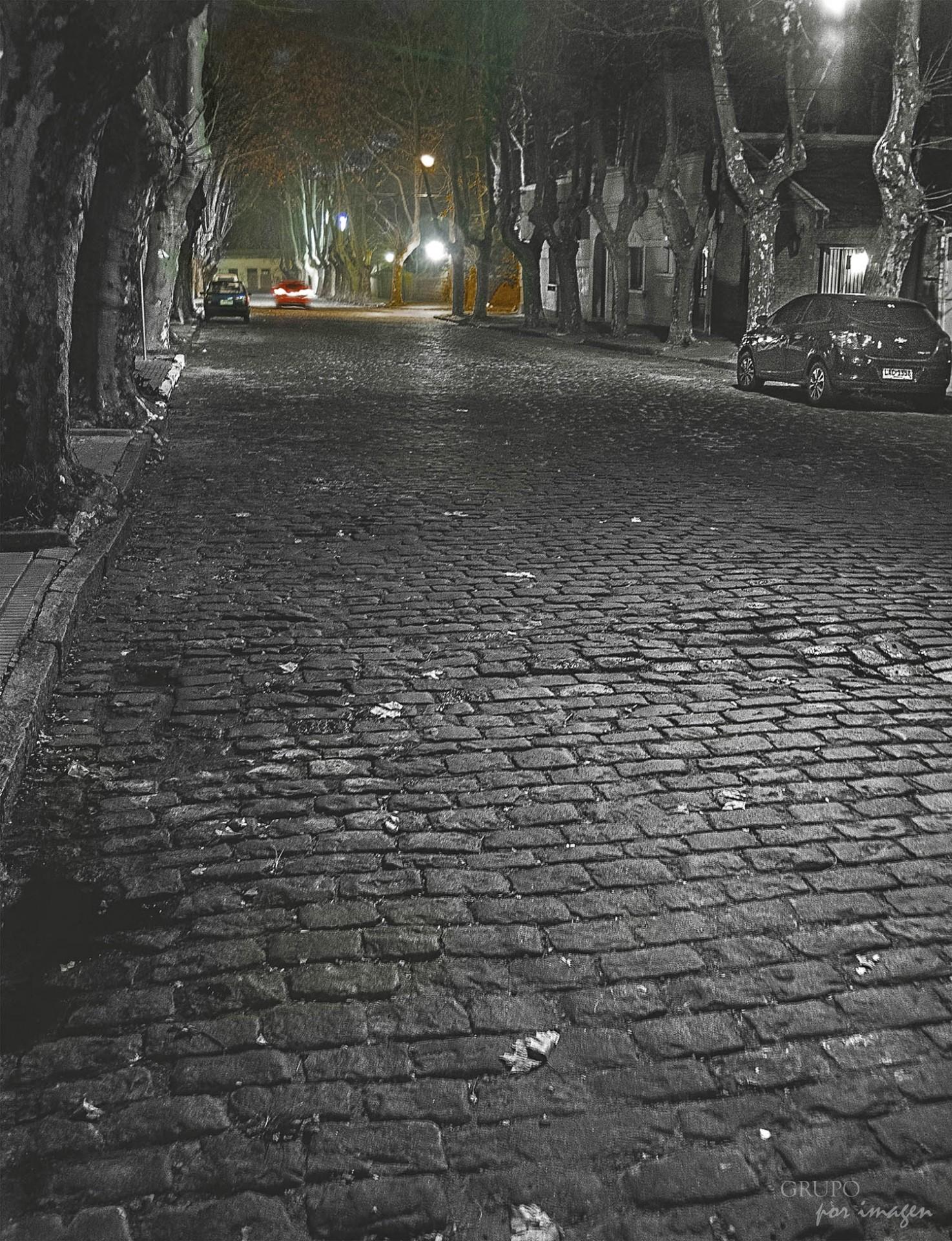 Colonia nocturna / Alberto Canevaro