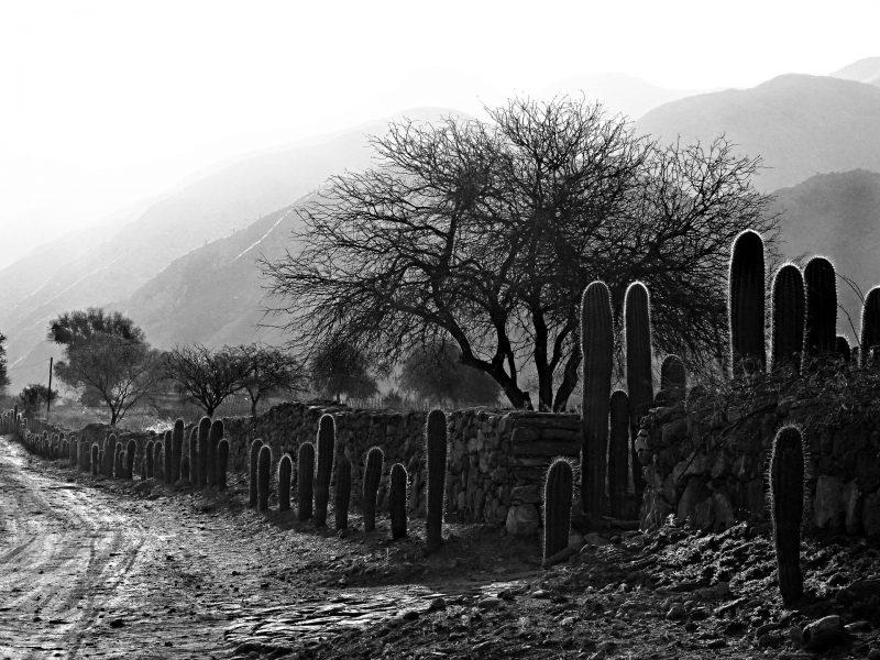 Valle Calchaquí – Cafayate